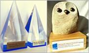 Internationaler Trainingspreis BDVT